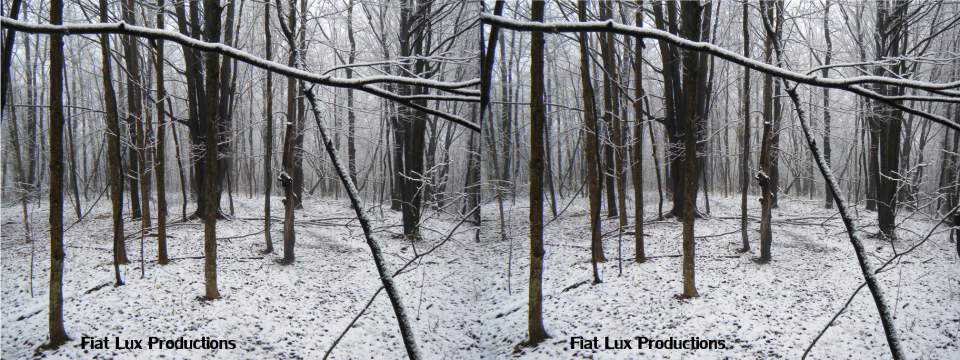 snowy wood stereo